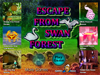 G2R Escape From Swan Forest