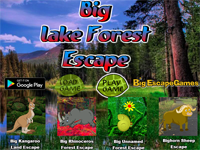 BIG Lake Forest Escape