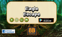 8B Eagle Escape