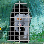 G2R Baby Elephant Forest Rescue