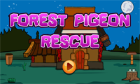 G2J Forest Pigeon Rescue