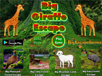 BIG Giraffe Escape