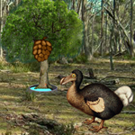 Dodo Bird Evolution
