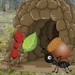 Ant Hill Forest Escape
