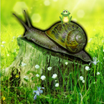 Snail Forest Escape
