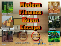 Modern Flowers Room Escape
