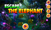 AVM Escape The Elephant