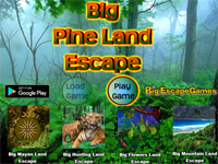 BIG Pine Land Escape