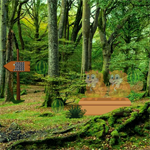 AVM Escape The Green Forest
