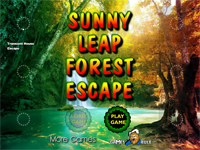 Sunny Leap Forest Escape