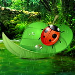 Ladybug Rainforest Escape