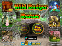 Wild Badger Rescue