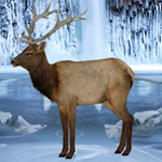 Frozen Land Elk Rescue