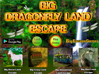 BIG Dragonfly Land Escape