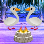 WOW Duck Forest Escape
