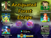 WOW Antiquated Forest Escape