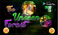 NSR The Unseen Forest